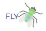 FLY reporting
